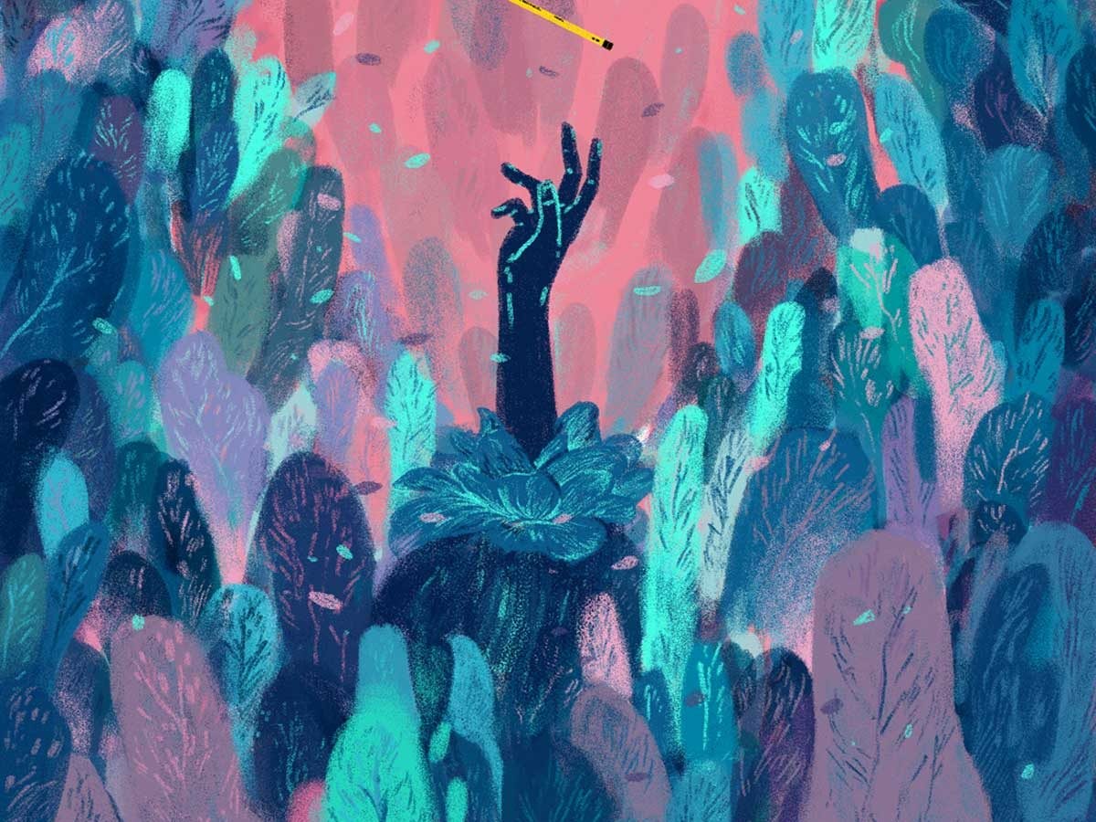 Animation and illustration by Sam Rowe