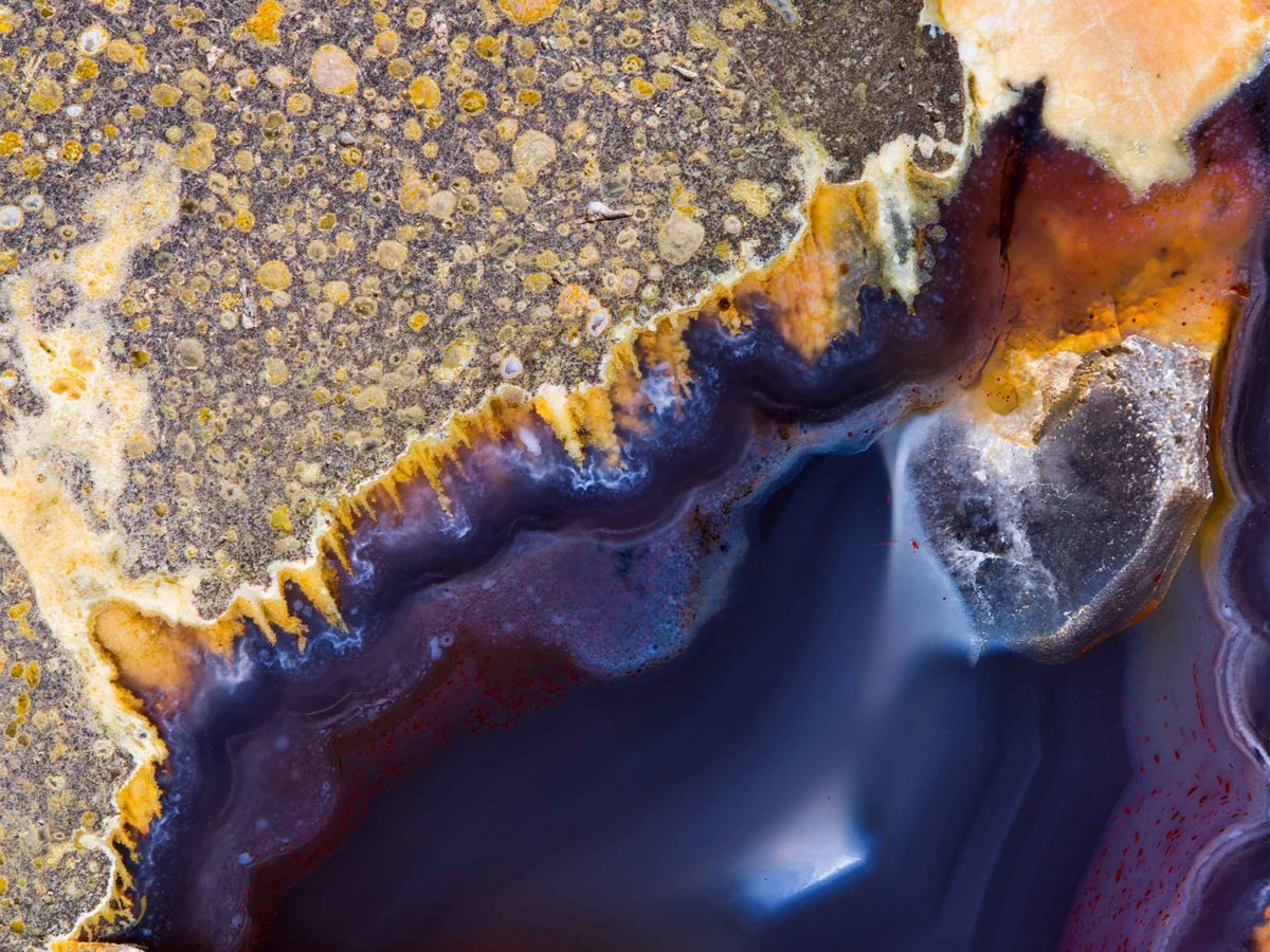 Texture/Contexture photographic and video installation by Valentina Schulte announced for Sydney